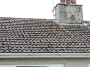 Thermilate Roof Coatings Mhs Limited Isle Of Man Property Services